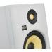 KRK Rokit RP7 G4 White Noise